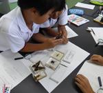 「こん虫を調べよう」 小学校3年生対象